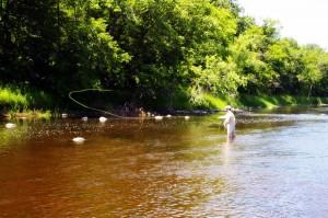 bickford-fly-fishing