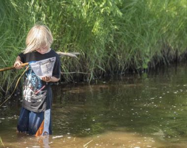 boy-in-water-with-net-Family-Nature-Day