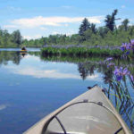namekagon-paddle-Sampson-mark-blue-iris-2015