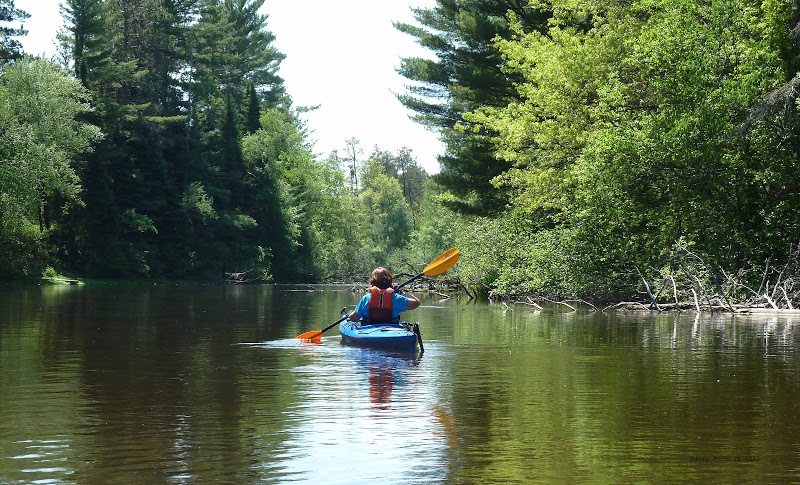 Paddler on the Namekagon River. (Photo: Wild Rivers Conservancy)