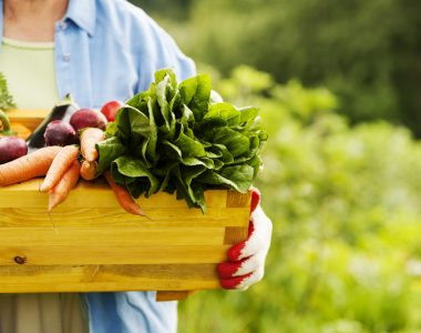 woman-holding-box-with-vegetables_small-locally-grown