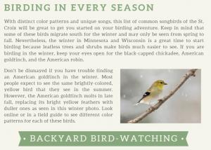 raaonline_backyardbirdwatching