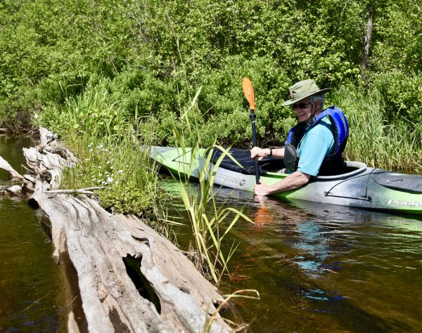 Paddling the Namekagon. (Photo: Conservancy Paddle Participant)