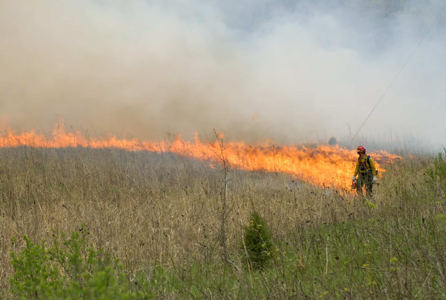 NPS employee in fire gear starting a prescribed burn along the lower St. Croix River. (Photo: NPS)