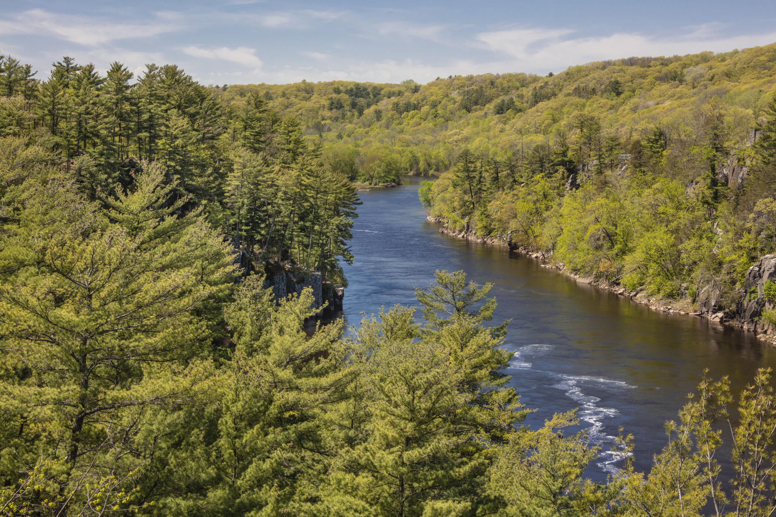 Forested lands around the Riverway.  (Photo: Craig Blacklock)