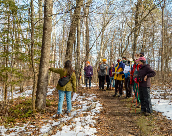 Exploring the woods of the Namekagon. (Photo: Kate Wright, Wild Rivers Conservancy)