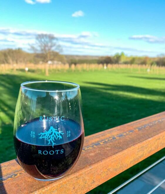 Kicking back at Rustic Roots Winery. (Photo: Kate Wright, Wild Rivers Conservancy)