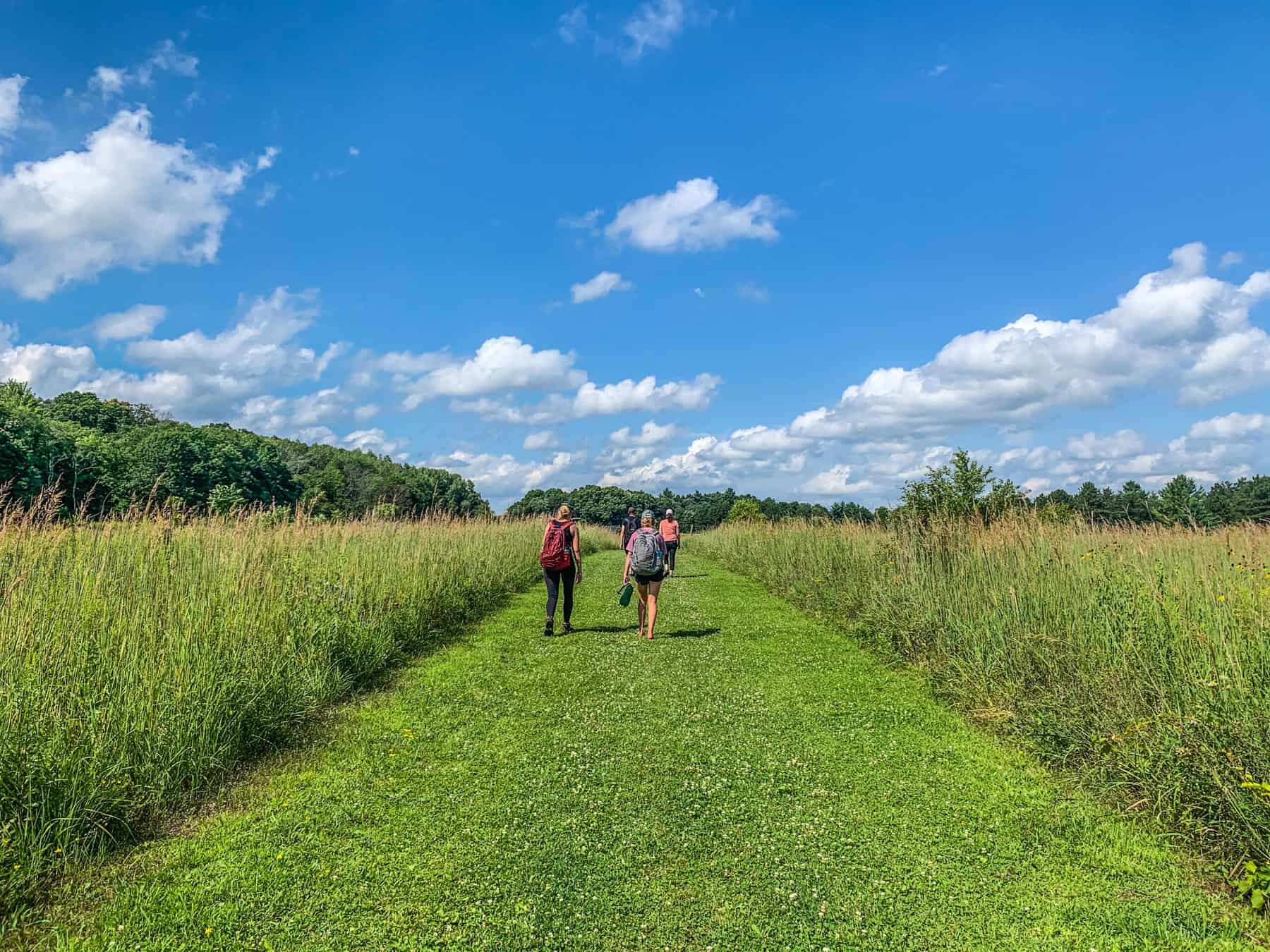 Hiking at William O' Brien State Park. (Photo: Kate Wright, Wild Rivers Conservancy)